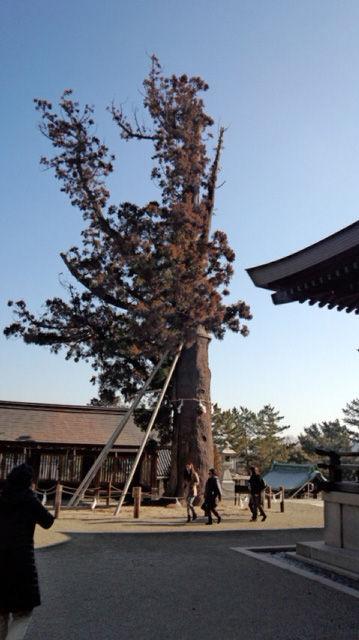 吉備津彦神社20130127-2
