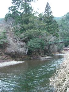 のせがわの川