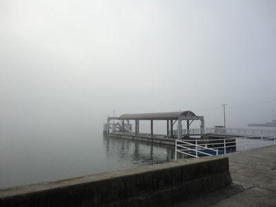 濃霧20111104-1