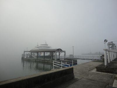 濃霧20111104-2