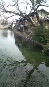 風景20110209