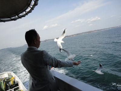 カモメ20111206-2