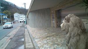 ライオン20120131-1